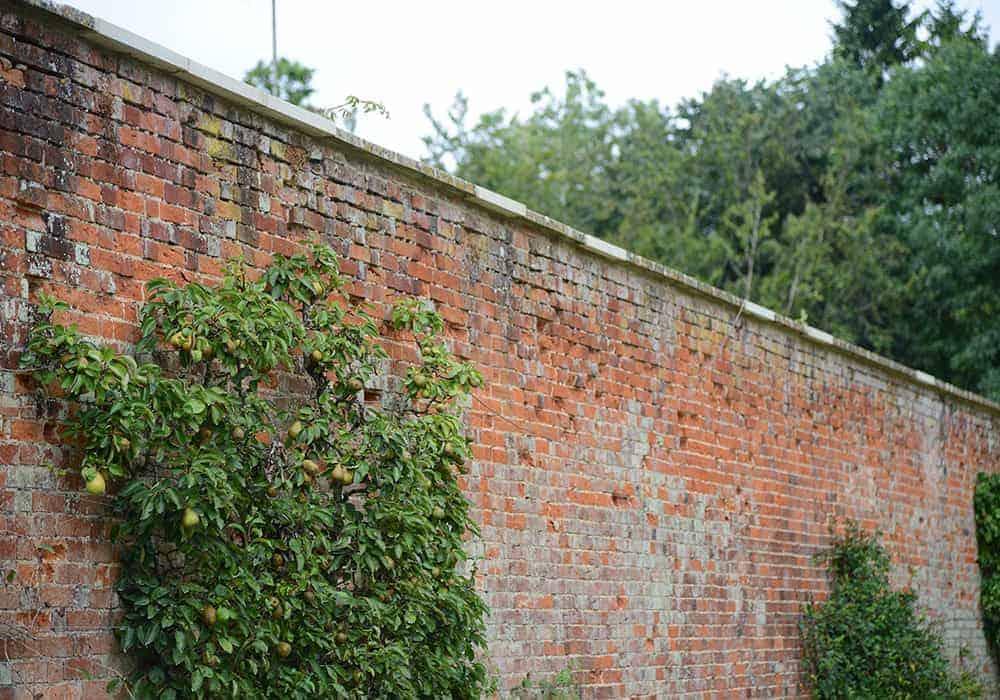 02 Walled garden